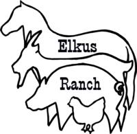 Elkus